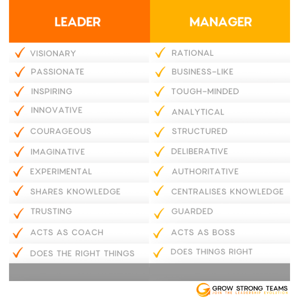 Leadership Coach for Healthcare 4